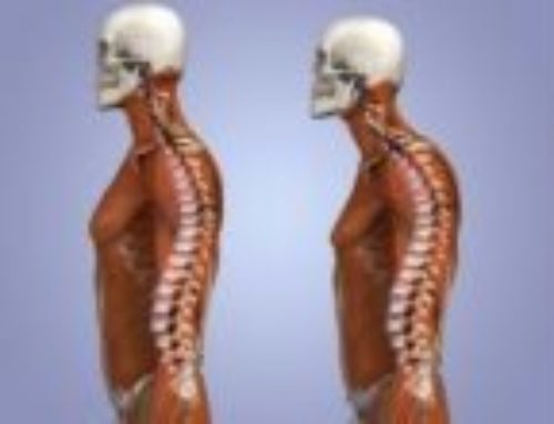 Ingredienti per una buona meccanica posturale.